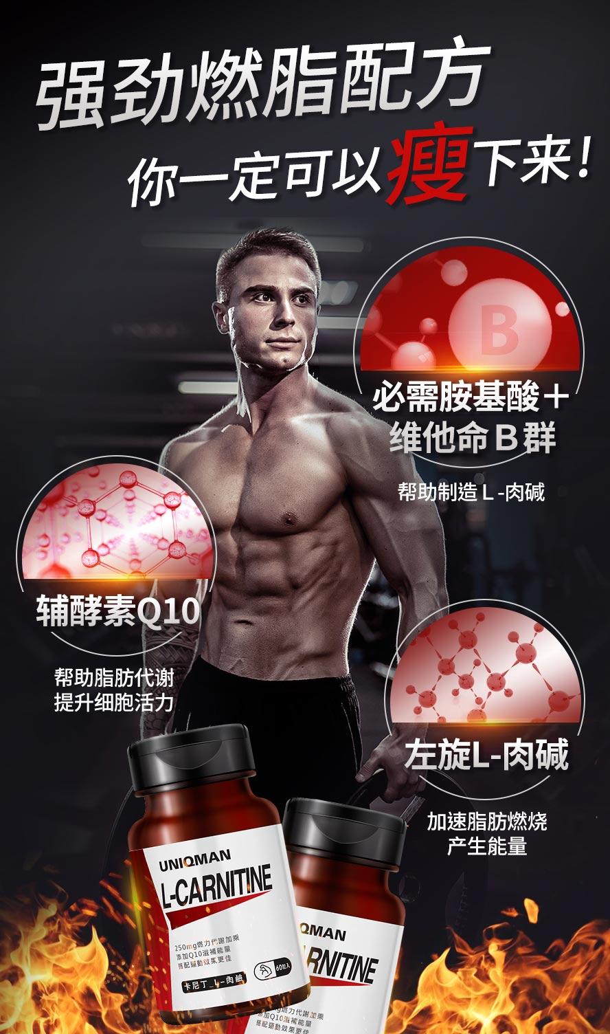 左旋肉碱又称脂肪的搬运工,主要运送脂肪至细胞内燃烧,转化成能量