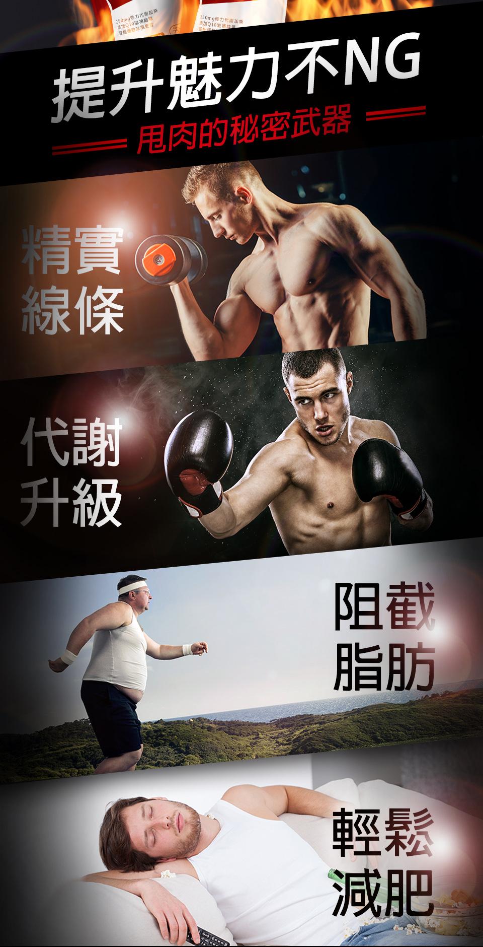 左旋肉鹼可以提高脂肪氧化速率,有助於減脂及耐力性運動,並能減少乳酸在肌肉細胞中的堆積