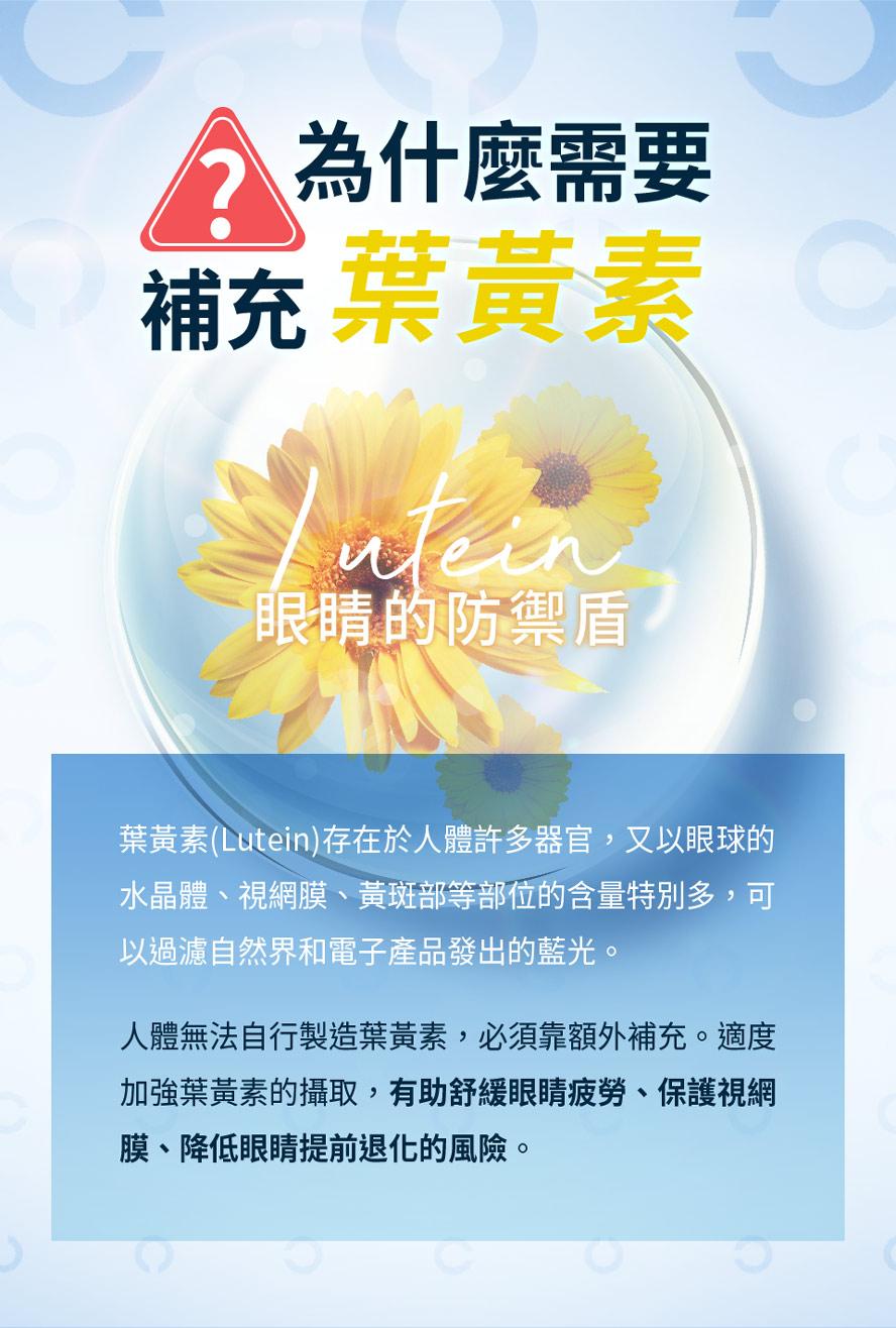 葉黃素是視網膜黃斑部中最重要的抗氧化成分,能抑制感光過程所形成的自由基