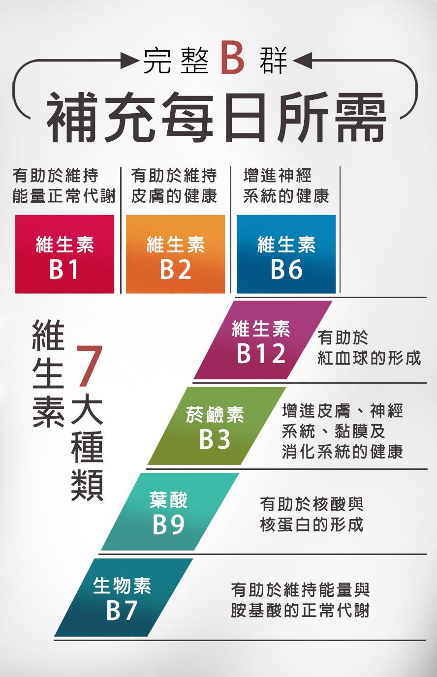 UNIQMANB群+馬卡內涵完整維生素,維他命B1,B2,B6,B12,菸鹼酸,補充整日維生素所需